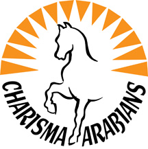 CHARISMA ARABIANS